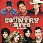 <span>Country Hits 2013</span>