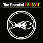 The Essential Fishbone