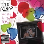 Wasted Little DJ's [Explicit]