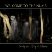 Photo of WELCOME TO THE NUMB