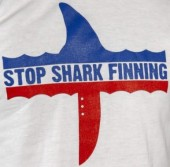 Photo of Stop Shark Finning