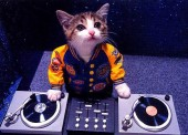 Photo of Dj TeknoKid