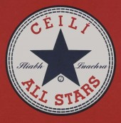 Photo of The Ceili Allstars