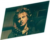 Photo of Terry Mosher - Rod Stewart tribute & originals